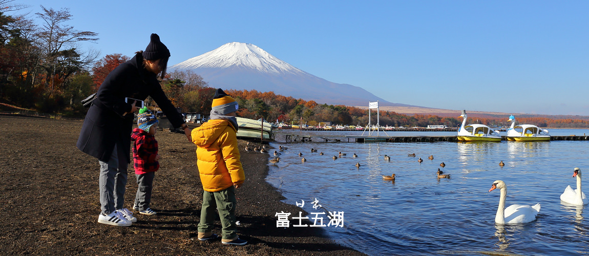 【富士五湖】紅葉富士山看到飽!秋季三天兩夜自駕經典行程